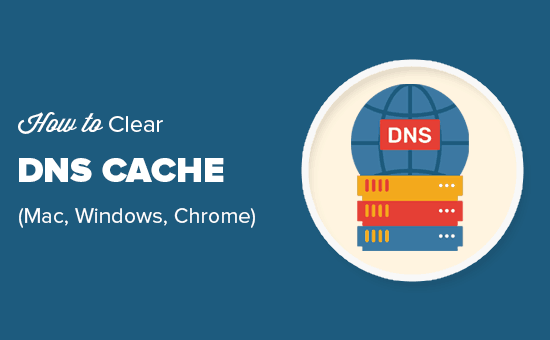 Easily clear DNS cache in macOS, Windows, and Chrome